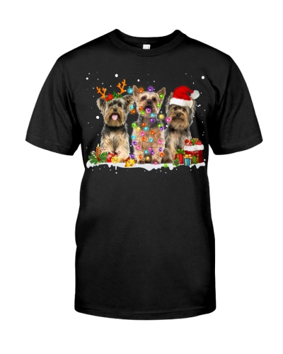 Yorkshire Terrier-Snow-Christmas
