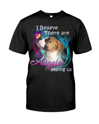 American Bulldog-Angels Among Us
