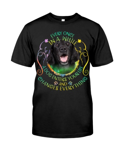 Flat Coated Retriever-Changes Everything