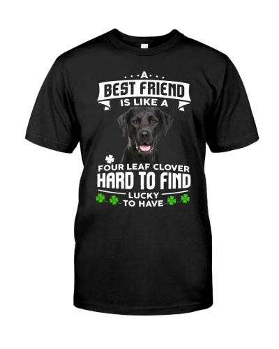 Labrador-Best Friend