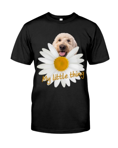 Goldendoodle-My Little Thing