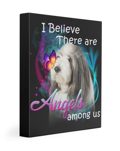 Bearded Collie-Canvas Angels