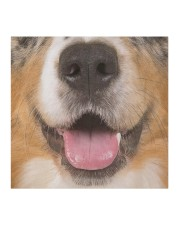 Australian Shepherd-Mask Mouth Cloth face mask aos-face-mask-coverlet-lifestyle-front-02