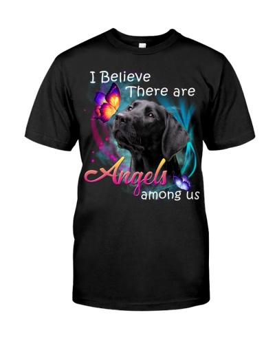 Labrador-02-Angels Among Us