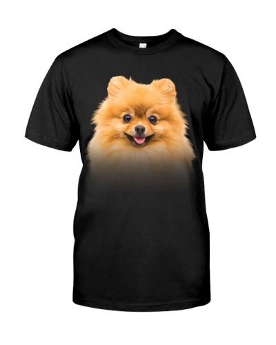 Pomeranian-Dog Face