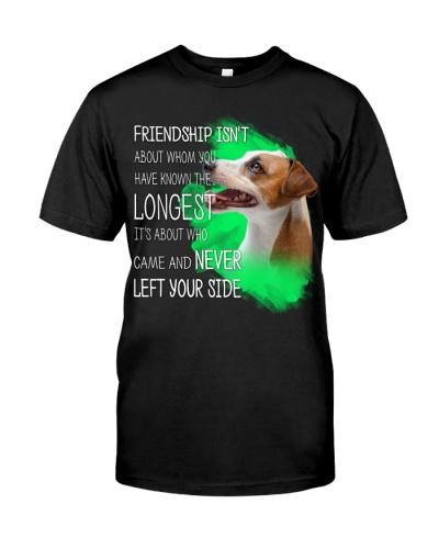 Jack Russell Terrier-The Longest