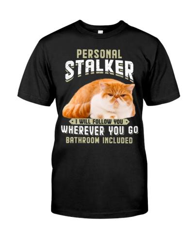 Exotic Shorthair Cat-01 - Stalker