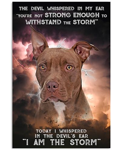 Pitbull-02 - Storm