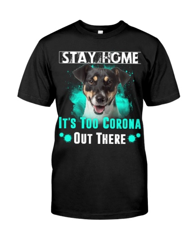 Jack Russell Terrier-02-Stay Home