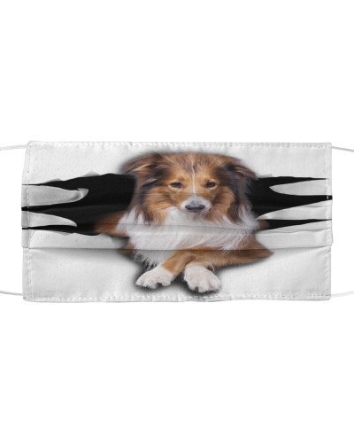 Rough Collie-Face Mask-Torn03