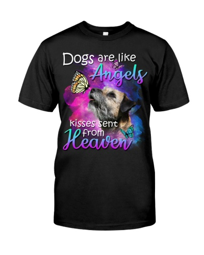 Border Terrier-02-From Heaven