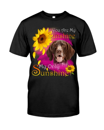 German Shorthaired Pointer-Face-My Sunshine