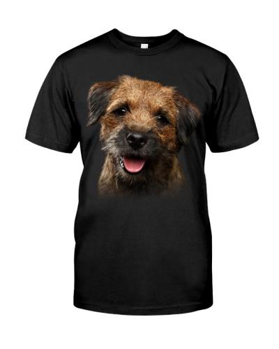 Border Terrier-Dog Face