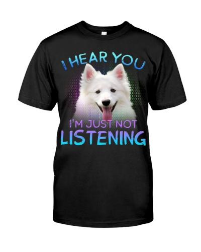 American Eskimo-02-I Hear You