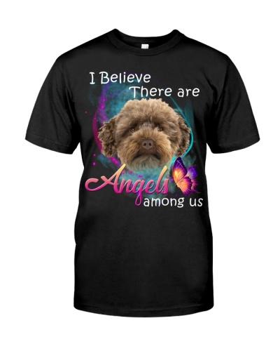 Australian Labradoodle-03-Angels Among Us