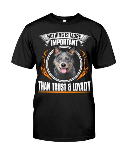 Australian Cattle-Trust And Loyalty