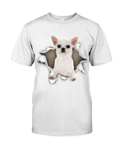 Chihuahua-04 - Torn02