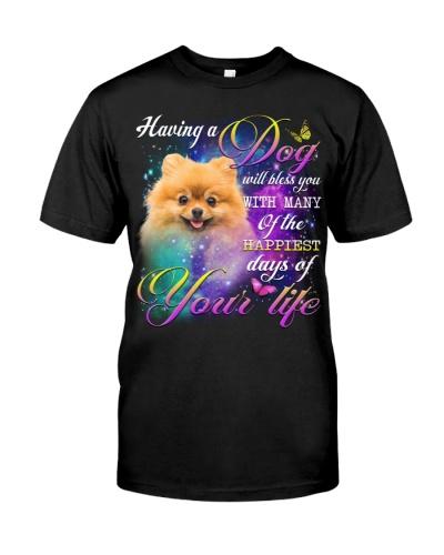 Pomeranian-Bless You
