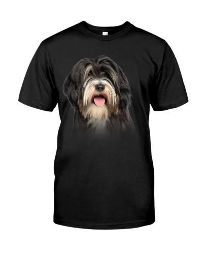 Tibetan Terrier - Only Face