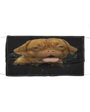 Dogue De Bordeaux-Hole Crack Cloth face mask front