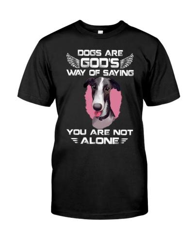 Polish Greyhound-Not Alone