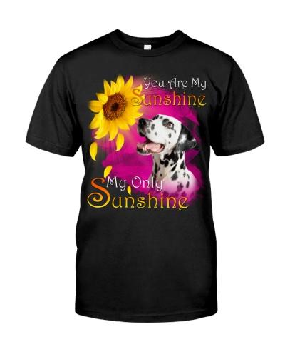 Dalmatian-My Sunshine