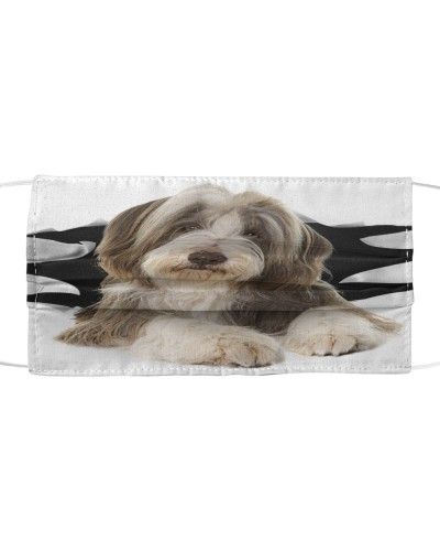 Bearded Collie-Face Mask-Torn03