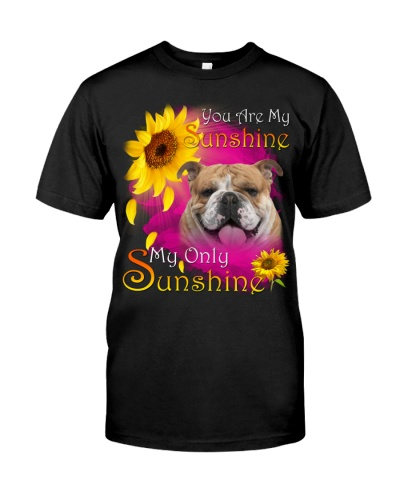 English Bulldog-Face-My Sunshine