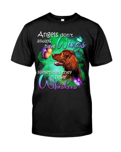 Irish Setter-Have Whiskers