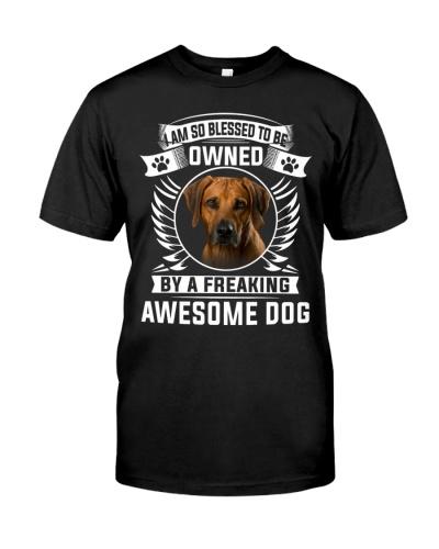Rhodesian Ridgeback-Awesome Dog