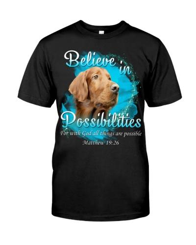 Irish Setter-02-Believe In Possibilities