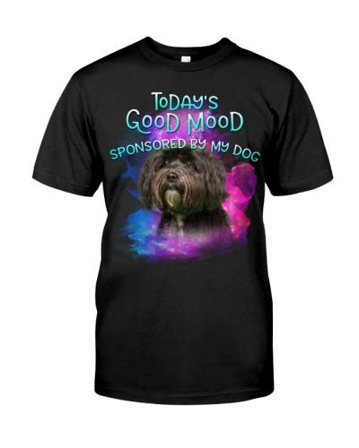Tibetan Terrier-02-Good Mood