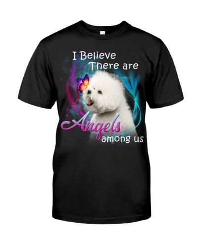 Bichon-Angels Among Us