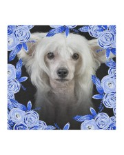 Chinese Crested-Blue Mask Cloth face mask aos-face-mask-coverlet-lifestyle-front-02