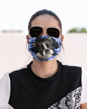 Boston Terrier-Blue Mask Cloth face mask aos-face-mask-lifestyle-02