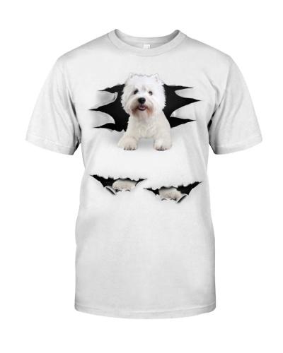 West Highland White Terrier - Torn03