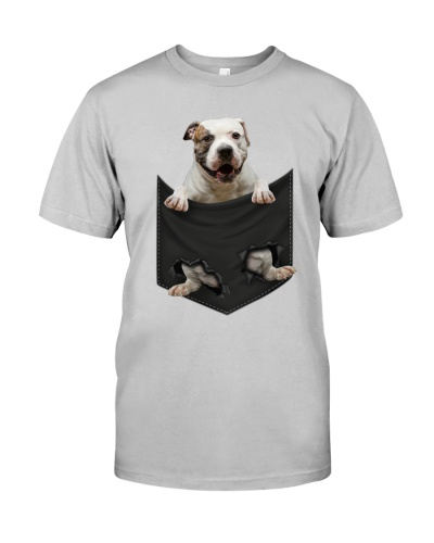 American Bulldog - Pocket-Mid