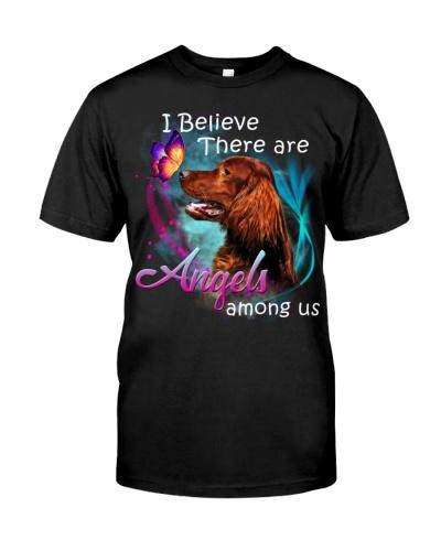 Irish Setter-Angels Among Us