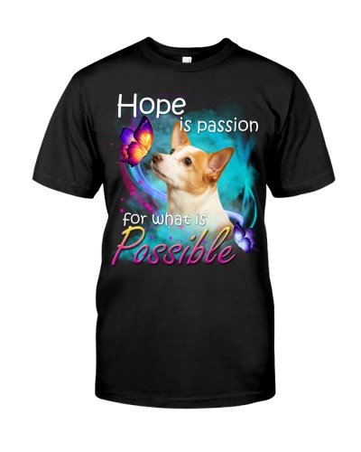Jack Russell Terrier-02-Hope Is Passion