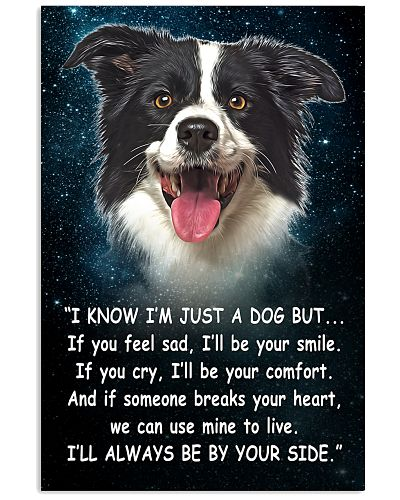 Border Collie - Your Side