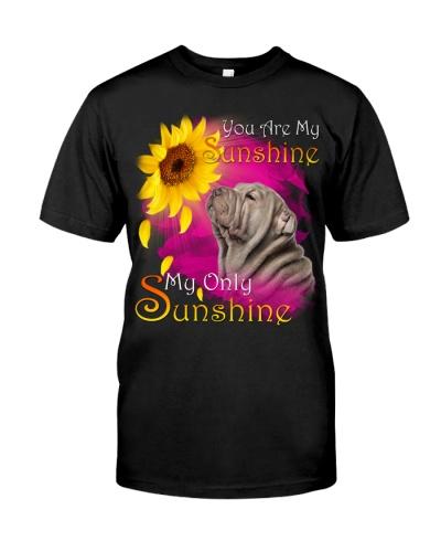 Shar Pei-02-My Sunshine