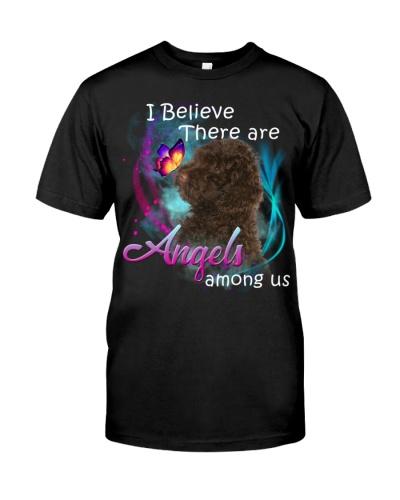 Australian Labradoodle-Angels Among Us