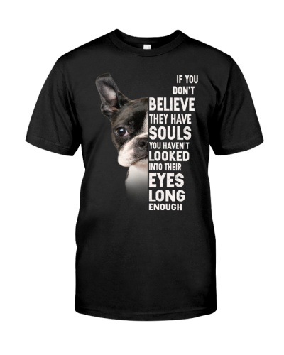 Boston Terrier-Have Souls