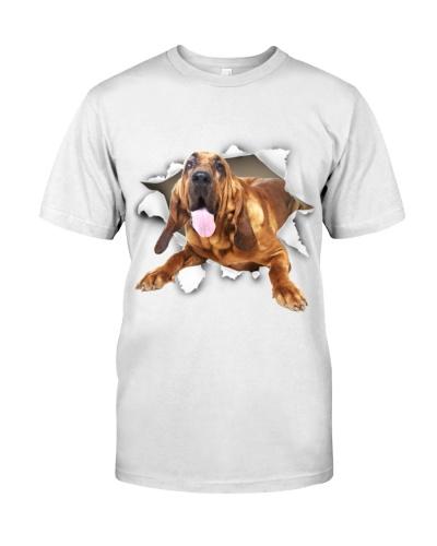 Bloodhound - Torn02