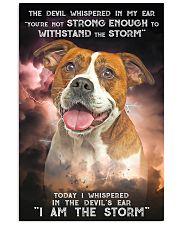 American Bulldog-02 - Storm 24x36 Poster front