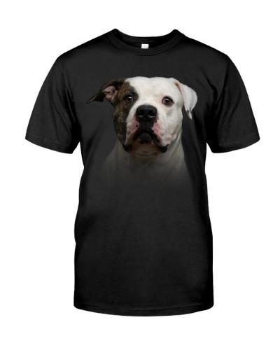American Bulldog-Dog Face