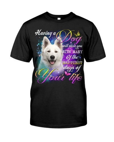 Berger Blanc Suisse-Bless You