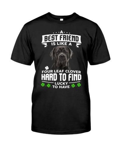 Cane Corso-Best Friend