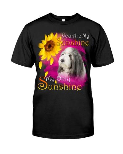 Bearded Collie-My Sunshine