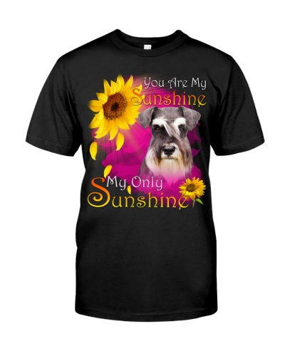 Schnauzer-Face-My Sunshine
